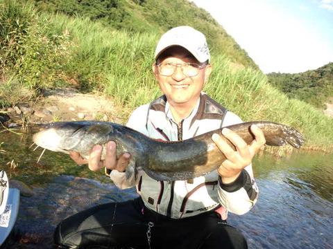 鮎釣りで・・・