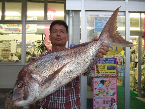 真鯛 87cm 7kg