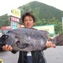 石鯛 68cm 5.6k