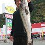 シーバス 78cm 2.8kg