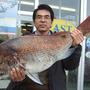 真鯛 87cm 8.4kg