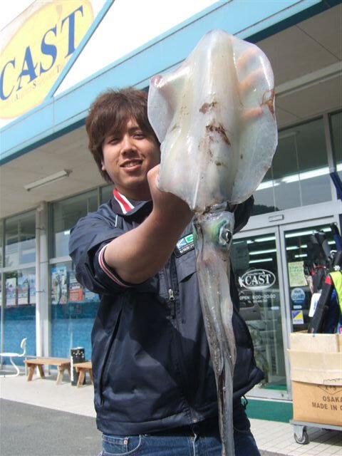 吉母漁港でのエギングで胴長32cm1460gのアオリイカ