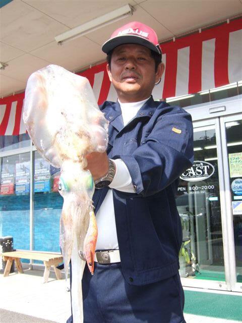 奈古港のエギングで胴長29cm、1040gのアオリイカ