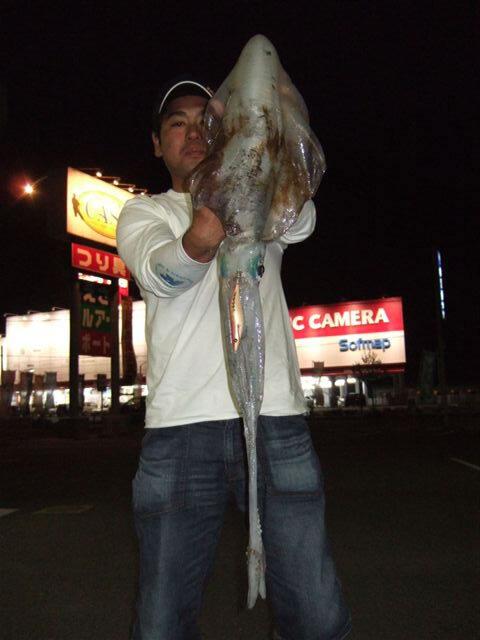 須佐漁港でのエギングで胴長40cm、2475gのアオリイカ