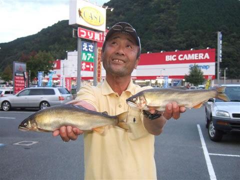 球磨川で31.6cm355gと31.6cm390gの尺鮎