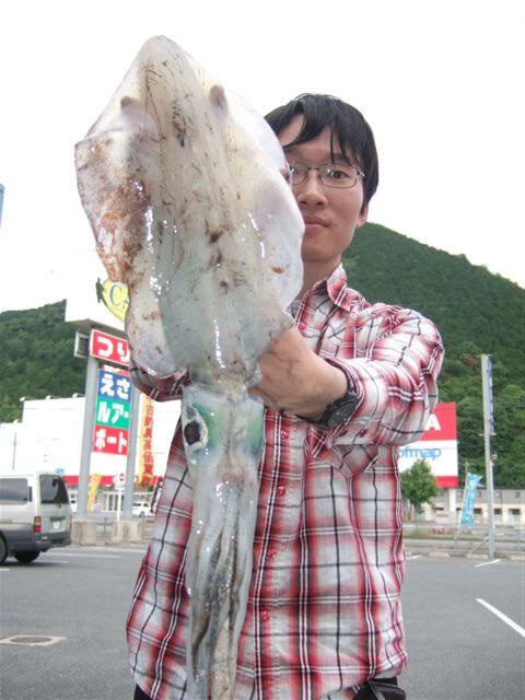 仙崎の人工島で胴長27cm、1010gのアオリイカ