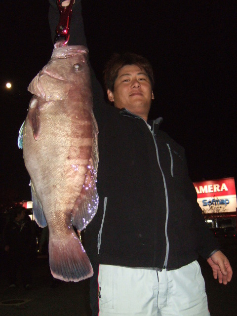 高級根魚!