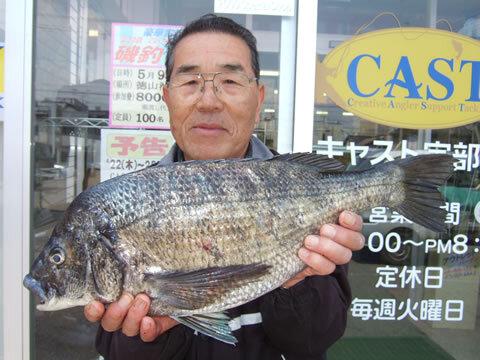 チヌ 49cm 2.1kg