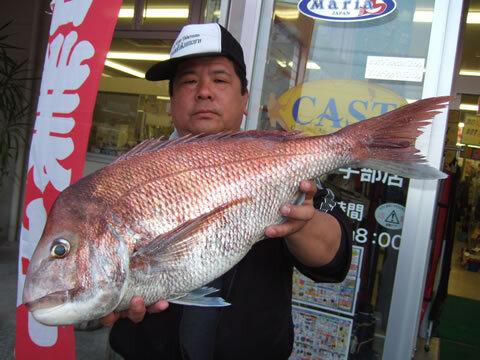 上関沖で真鯛 72cm 6kg