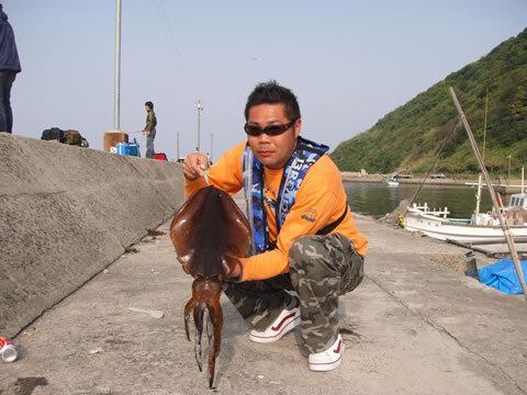 宇賀漁港 アオリイカ 胴長 37cm 2000g